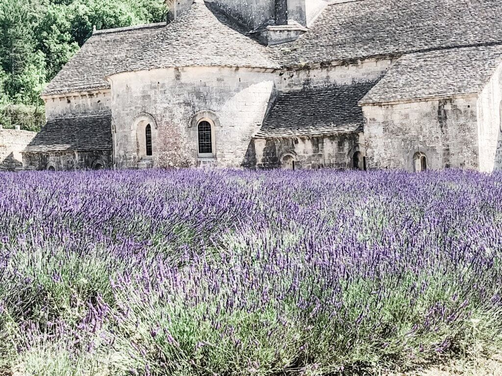 hotel.review.la.nesquiere.lavendar.fields