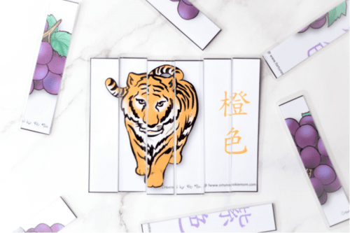 multicultural-educational-activities-students-language-cards-chinese