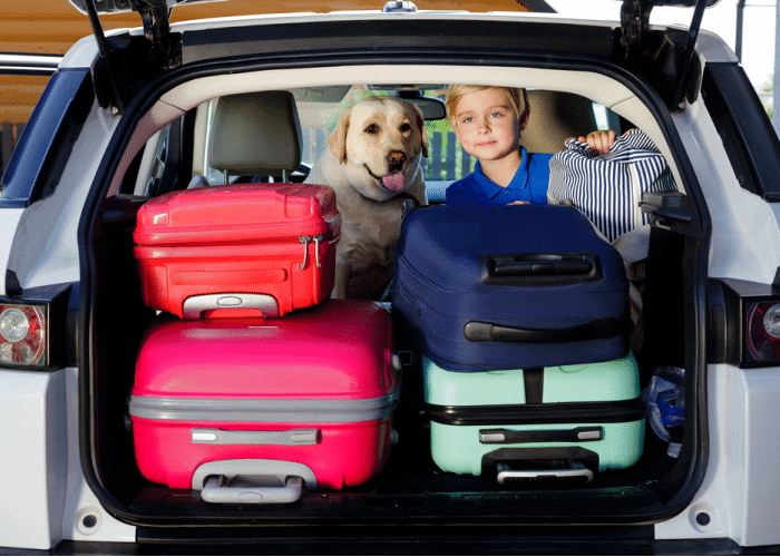 road-trip-packing-list-kid-and-dog-and-suitcases-in-car