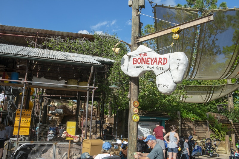 the boneyard playground at Disney's animal kingdom