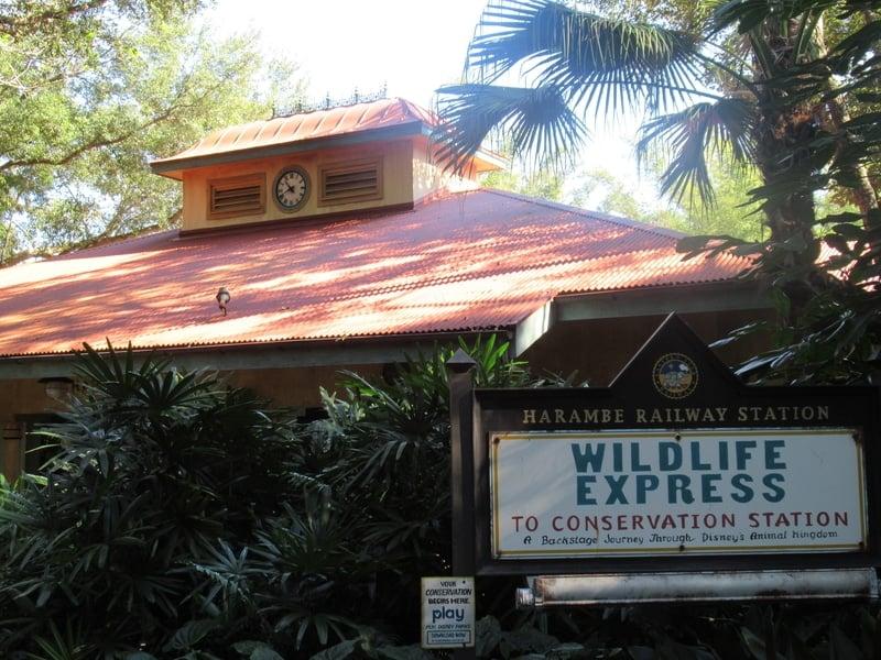 wildlife express train station at disney's animal kingdom