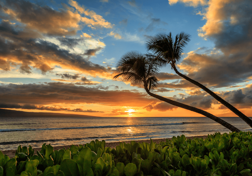 best-hawaiian-islands-for-families-maui-sunset