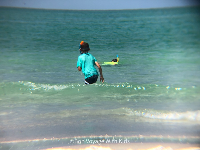 things to do on anna maria island snorkeling