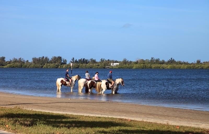 horseback riding in Anna Maria Island
