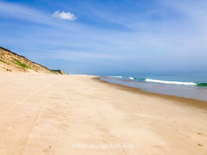 best beaches on cape cod for kids truro