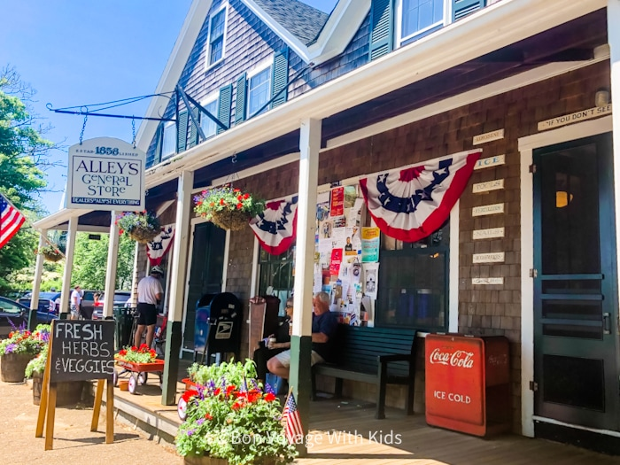 things to do on martha's vineyard with kids alleys general store