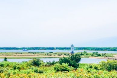30+ Epic Things To Do On Martha's Vineyard With Kids