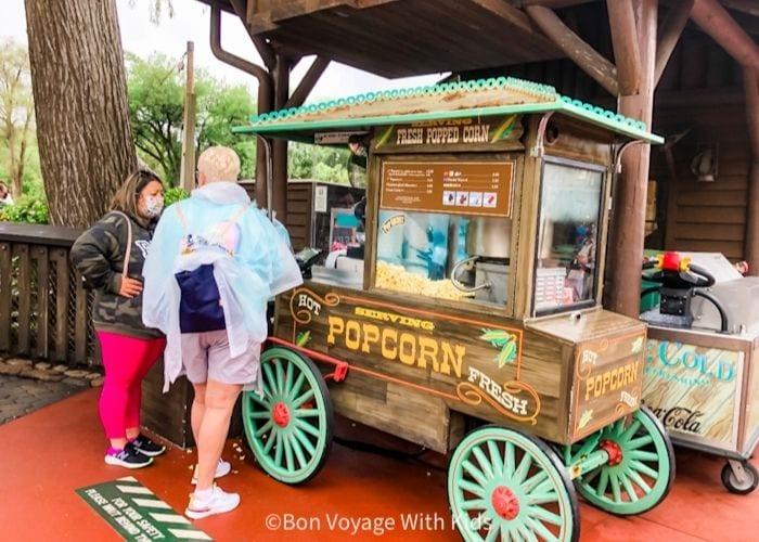 popcorn cart at Magic Kingdom