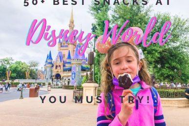 50+ Best Snacks in Disney World You Must Try
